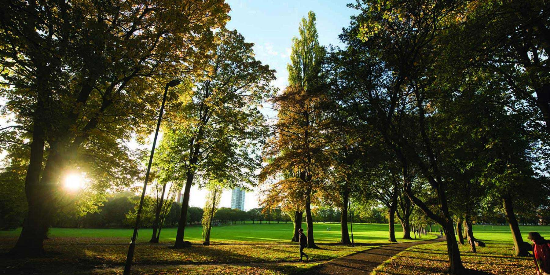 Nature Based Therapy: The New Way To Reduce Stress