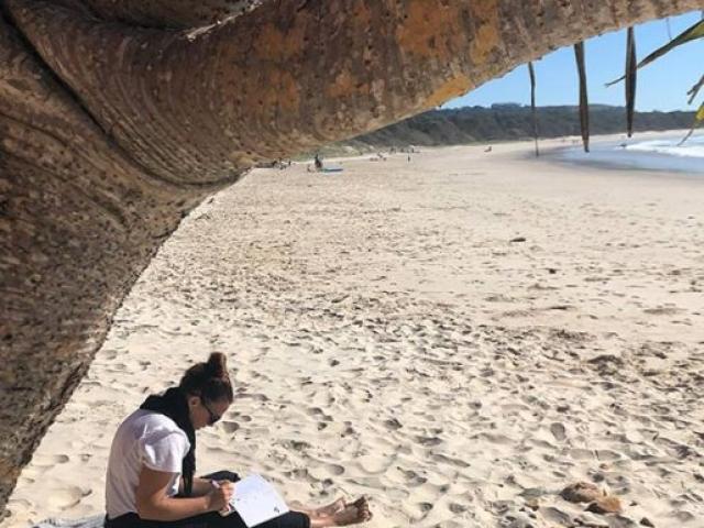 Diploma of NBT - NSW 2019 - Nature Based Journalling